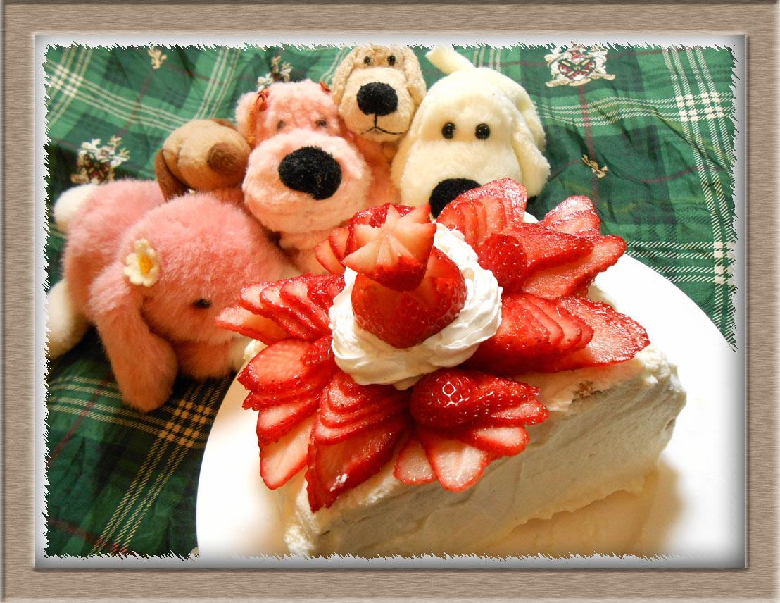 ビスケットケーキ (1)