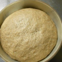 フェンネルパン (発酵後)