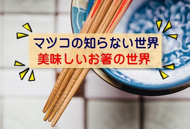 マツコの知らない世界 お箸 らーめん箸 納豆箸